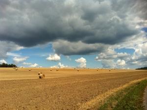 Landwirtschaftliches Idyll bei Kozaroviche